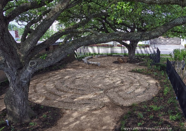 Tree of Life Labyrinth 2.jpg